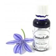 AnneFella : Sinus Serenity