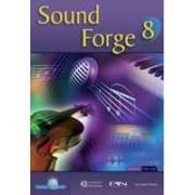 Sound Forge 8 (323)