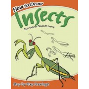 How to Draw Insects, Paperback