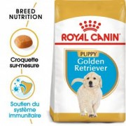 Royal Canin Breed Royal Canin Golden Retriever Puppy pour chiot 12 kg