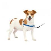 PetSafe Easy Walk Dog Harness, Royal Blue/Navy, Small