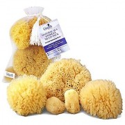 Natural Sea Sponges 5 pc Multi Pack the Perfect Spa Gift Set to Pamper Moms Brides Girlfriends Teens; Gentle Hypoall