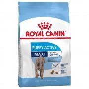 Royal Canin Size 2 x 15 kg Maxi Junior Active Royal Canin - valpfoder