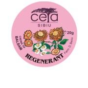 Crema Tip Unguent Regenerant cu Extracte Naturale 20g/40g 40 grame