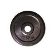 Gumeni disk uteg 2,5 kg (2,5 kg)
