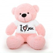 Pink 5 Feet Big Teddy Bear Wearing A I Love You T-Shirt