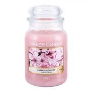Yankee Candle Cherry Blossom vonná svíčka 623 g