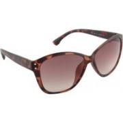 Farenheit Cat-eye Sunglasses(Brown)