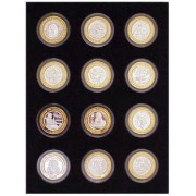 Black Silver Strike Display Insert for 12 Silver Strikes Casino Coins (Not Included)