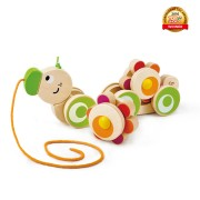 Push and Pull Walk-Along Catapillar by Hape