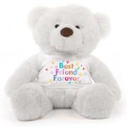 White 2 feet Fur Face Big Teddy Bear wearing a Best Friend Forever T-shirt