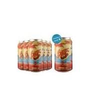Overhop Summer Time Summer Ale - Compre 5, leve 6!