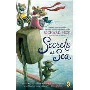 Secrets at Sea, Paperback