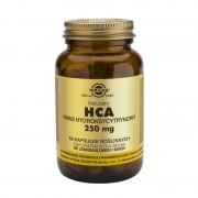 Solgar HCA 250 mg x 60 Kapseln !