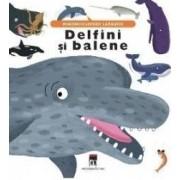 Delfini si balene - Minienciclopedii Larousse