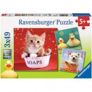 Puzzle animale adorabile. 3x40 piese, RAVENSBURGER