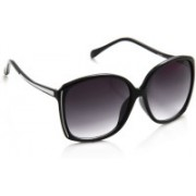 Petrol Over-sized Sunglasses(Violet, Grey)