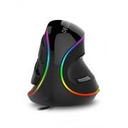 DeLUX mouse vertical ergonómico con cable, grande RGB ergonómico con 6 botones, reposamuñecas extraíble, 4000 DPI y software a bordo para reducir la tensión de la mano, para túnel carpiano (M618Plus RGB-negro)