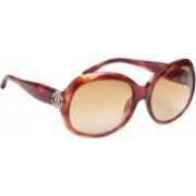 Roberto Cavalli Round Sunglasses(Brown)