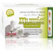 Extract purificat de rasina mumie cu propolis-capsule 60cps DAMAR