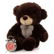 2 Feet Chocolate Brown Teddy Bear with a Bow