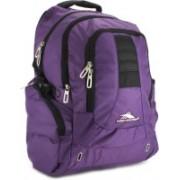 High Sierra Incline Laptop Backpack(Purple, Black)