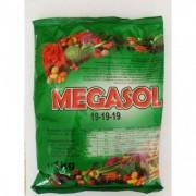 Ingrasamant - Megasol 19-19-19 /1 kg
