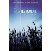 NIV, Outreach New Testament, Large Print, Paperback, Paperback/Zondervan