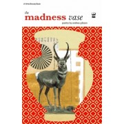 The Madness Vase: By Andrea Gibson