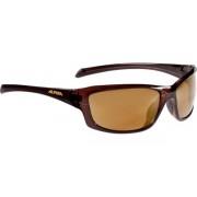 Alpina Sonnenbrillen Dyfer A8559391