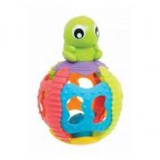 turtle Funny (384360)
