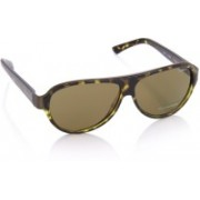 Pepe Jeans Aviator Sunglasses(Brown)