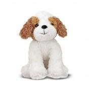 Câinele Russel Terrier Jackson Jack