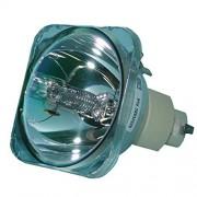 Lutema Platinum Lámpara para Proyector BenQ 5J.Y1B05.001 (Sin Carcasa)