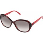 Tommy Hilfiger Oval Sunglasses(Brown)