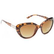 Dressberry Cat-eye Sunglasses(Brown)