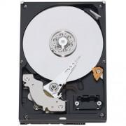 Hard disk 3.5 Seagate 250GB 7200RPM 16MB SATA-III, ST250DM000