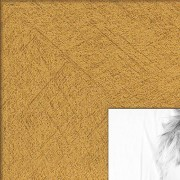 ArtToFrames 18x24 Inch Classic Gold Picture Frame, WOM0066-76808-YGLD-18x24