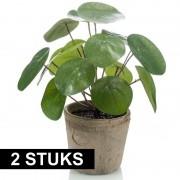 Bellatio flowers & plants 2x kunstplanten groen in pot 25 cm kunstplant