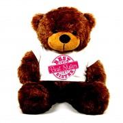 3 feet big brown teddy bear wearing special Best Sister T-shirt