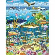 Puzzle Larsen Animale în mare, 60 piese