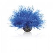 biOrb malá mořská lilie modrá