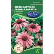 Echinacea (2 buc)