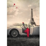 Puzzle Art Puzzle - Paris, 1.000 piese alb-negru (Art-Puzzle-4359)