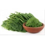 AWA herbs Moringa list 50g