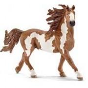 Schleich Domaće životinje - Pinto konj - pastuv 13794