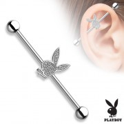 Industrial piercing Playboy