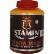 Stamin Nutrition Mega Mass 2 kg Chocolate free shaker