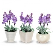 white mini flower pots with purple flowers
