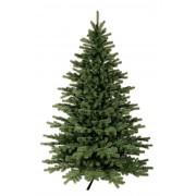 Natale albero 'Exclusive', 240 cm